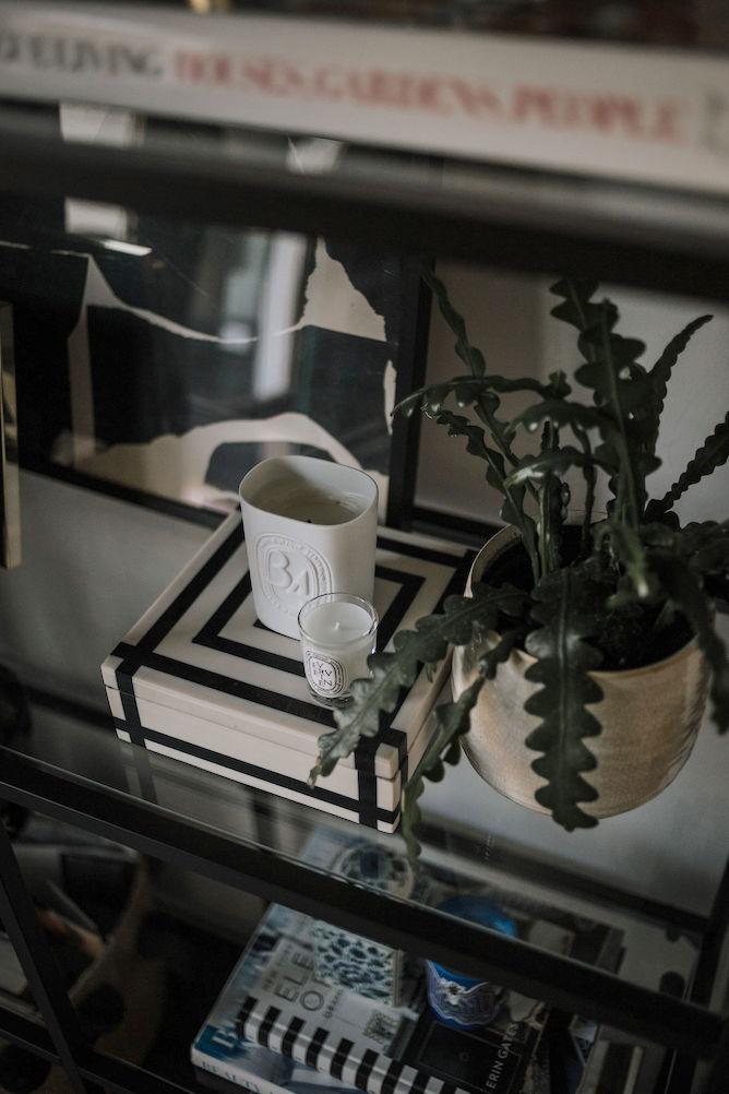 verzorgen van planten