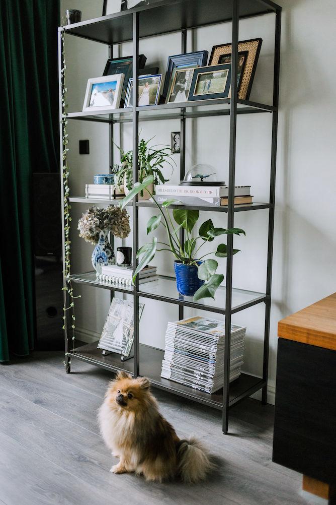 Ikea VITTSJO open kast stylen